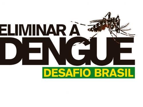 Mosquitos aliados da Fiocruz chegam às áreas finais de Niterói e Ilha do Governador,