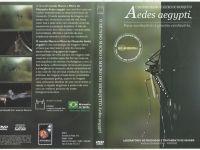 Documentário aborda hábitos e ciclo biológico do Aedes aegypti